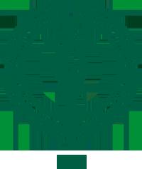 1262-jyyn_logo_verkkoon___vihrea_ei_taustaa___png
